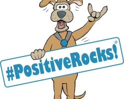 Positive rocks Logo